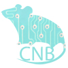 CNB Labs